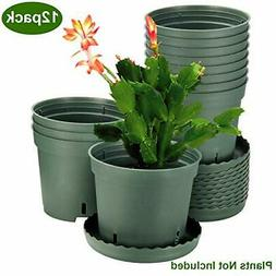 Plastic Pots for Plants, ZOUTOG 6 inch Plastic Planters with